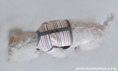 Как сделать шлейку для собаки своими руками в домашних условиях