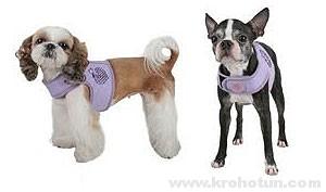 шлейка для собаки своими руками пошаговая инструкция - фото 5