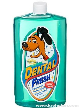 Dental-Fresh