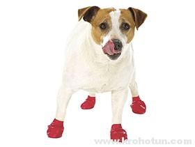 Выкройка обуви для маленьких собачек