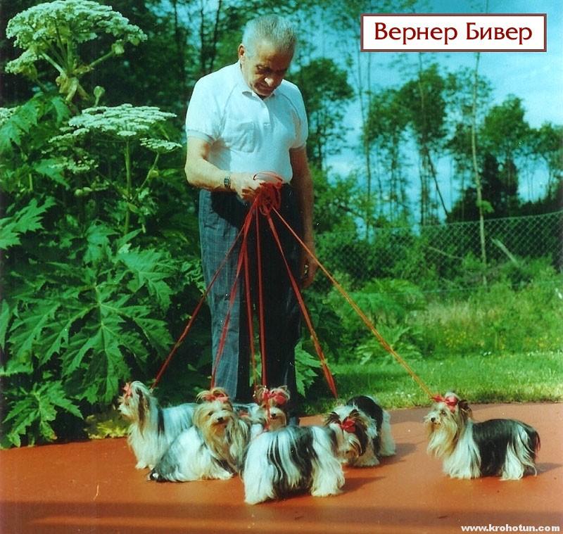 Вернер Бивер